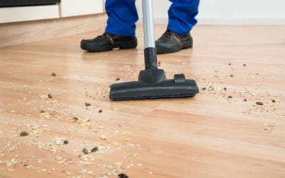 Preparing Your Hardwood Floors for Refinishing